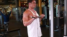 健身房肱二头肌强化训练-中级(4练/周)