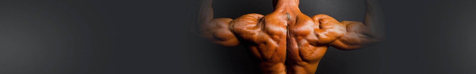 哑铃背部肌肉强化训练-新手(5练/周)