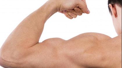 肌肉健美训练图解:手臂肌肉