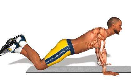 胸肌训练动作分解:跪姿俯卧撑