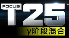 Focus T25 γ阶段混合