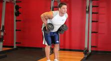 哑铃背部肌肉强化训练-初级(3练/周)