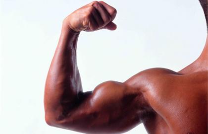 过少的谷氨酰胺会造成肌肉萎缩吗?