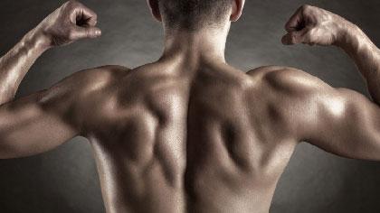 背部肌肉训练 5个最有效的哑铃练背动作