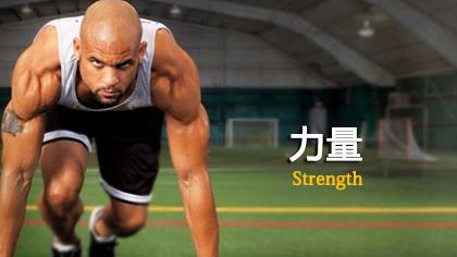 Asylum:力量Strength