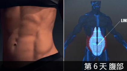 【中文字幕】科学健身第6天 - 腹部 | 肌肉构造讲解+训练方法