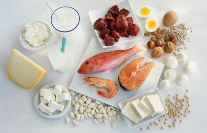 蛋白质的适量与过量