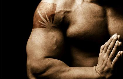 劣質肌酸竟會增加腎臟負擔?