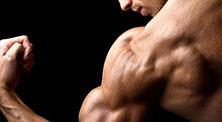 哑铃肩部肌肉强化训练-新手(2练/周)