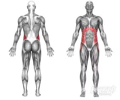 10个腹肌锻炼效果明显的健身动作 - 图片2
