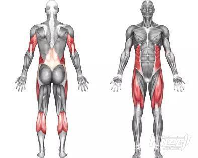 10个腹肌锻炼效果明显的健身动作 - 图片19