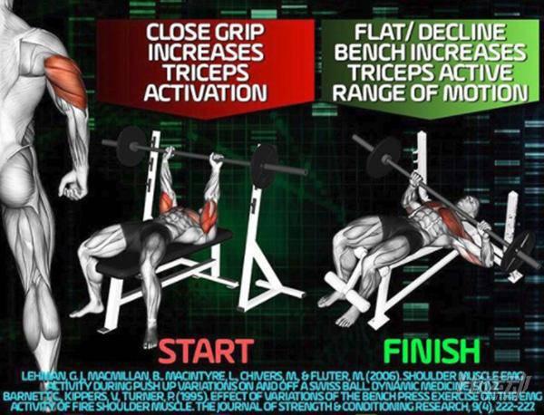 最科学的肱三头肌训练手册,麒麟臂就靠它 - 图片5