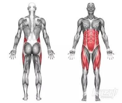 10个腹肌锻炼效果明显的健身动作 - 图片9