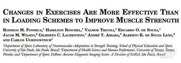 知识点:详解复合动作与孤立动作!肌肉与力量成长的关键 - 图片7