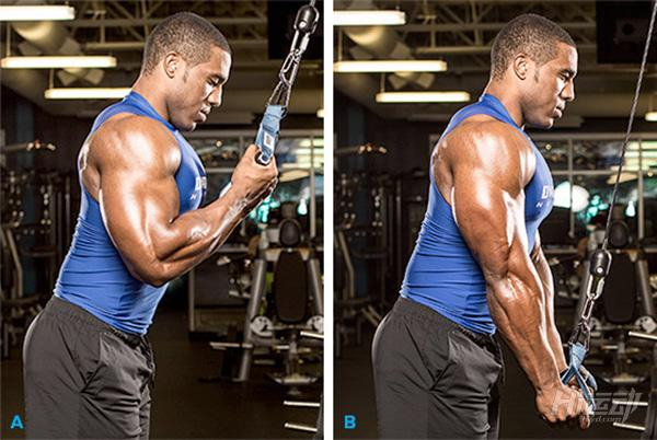 最适合用龙门架训练的5个动作,全面塑造你的身材! - 图片1