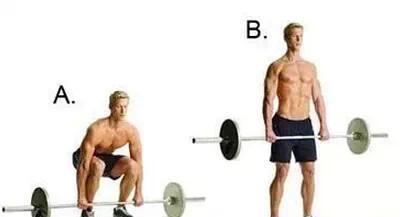 背部肌肉训练全攻略