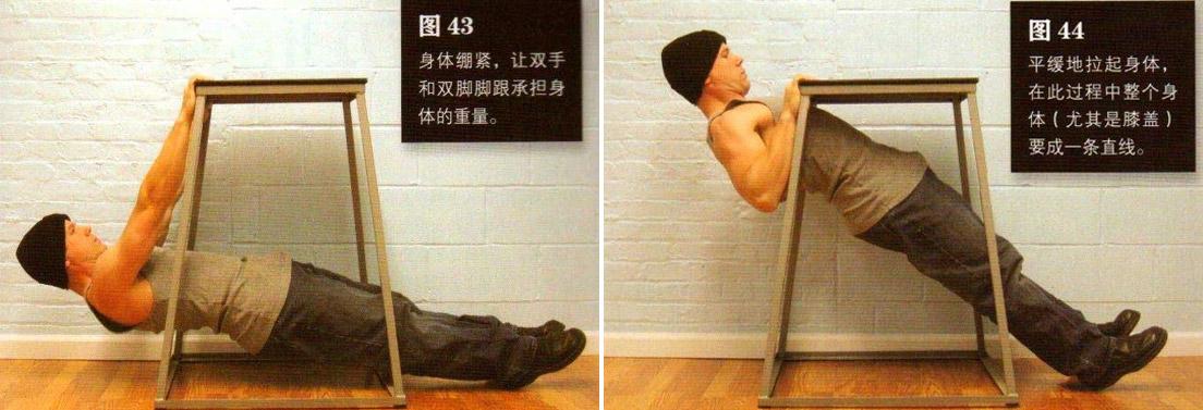 囚徒健身之引体向上 锻炼背部和肱二头 - 图片3