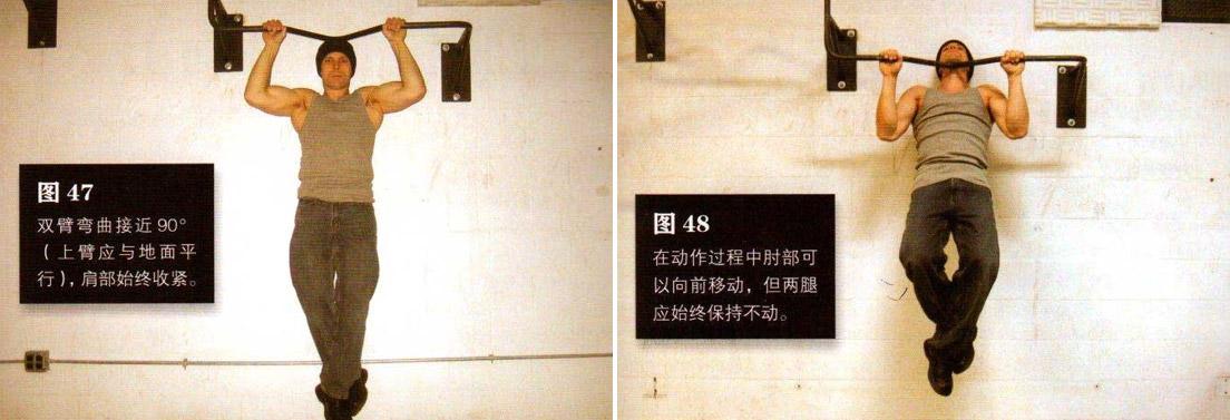 囚徒健身之引体向上 锻炼背部和肱二头 - 图片5
