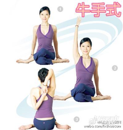 三组动物式瑜伽动作 快速瘦你的手臂 - 图片2