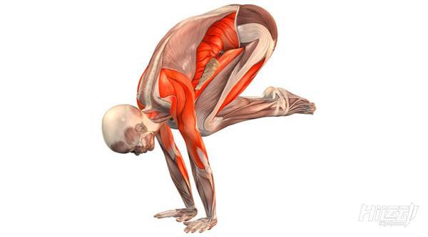 每天一式学瑜伽:乌鸦式!加强腹部肌群力量 - 图片2