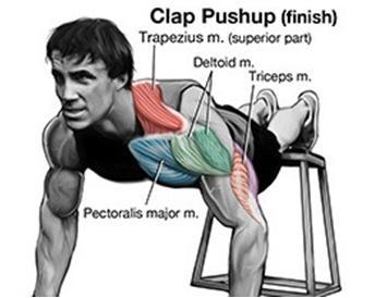 俯卧撑变种 锻炼肩、胸、上肢肌肉 - 图片6