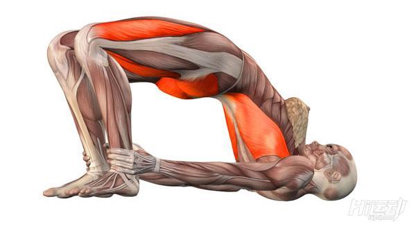每天一式学瑜伽:桥式!改善月经不适 - 图片2