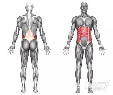 10个腹肌锻炼效果明显的健身动作 - 图片11