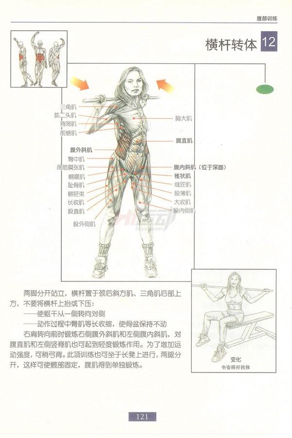 肌肉健美训练图解:腹部肌肉 - 图片12