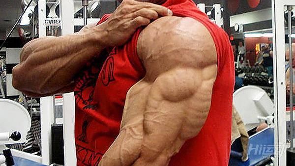 最科学的肱三头肌训练手册,麒麟臂就靠它 - 图片1