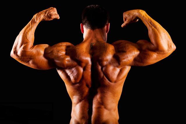 锻炼背部肌肉:最有效的9个动作(gif动态图展示)