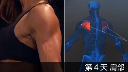 【中文字幕】科學健身第4天 - 肩部 | 肌肉構造講解+訓練方法