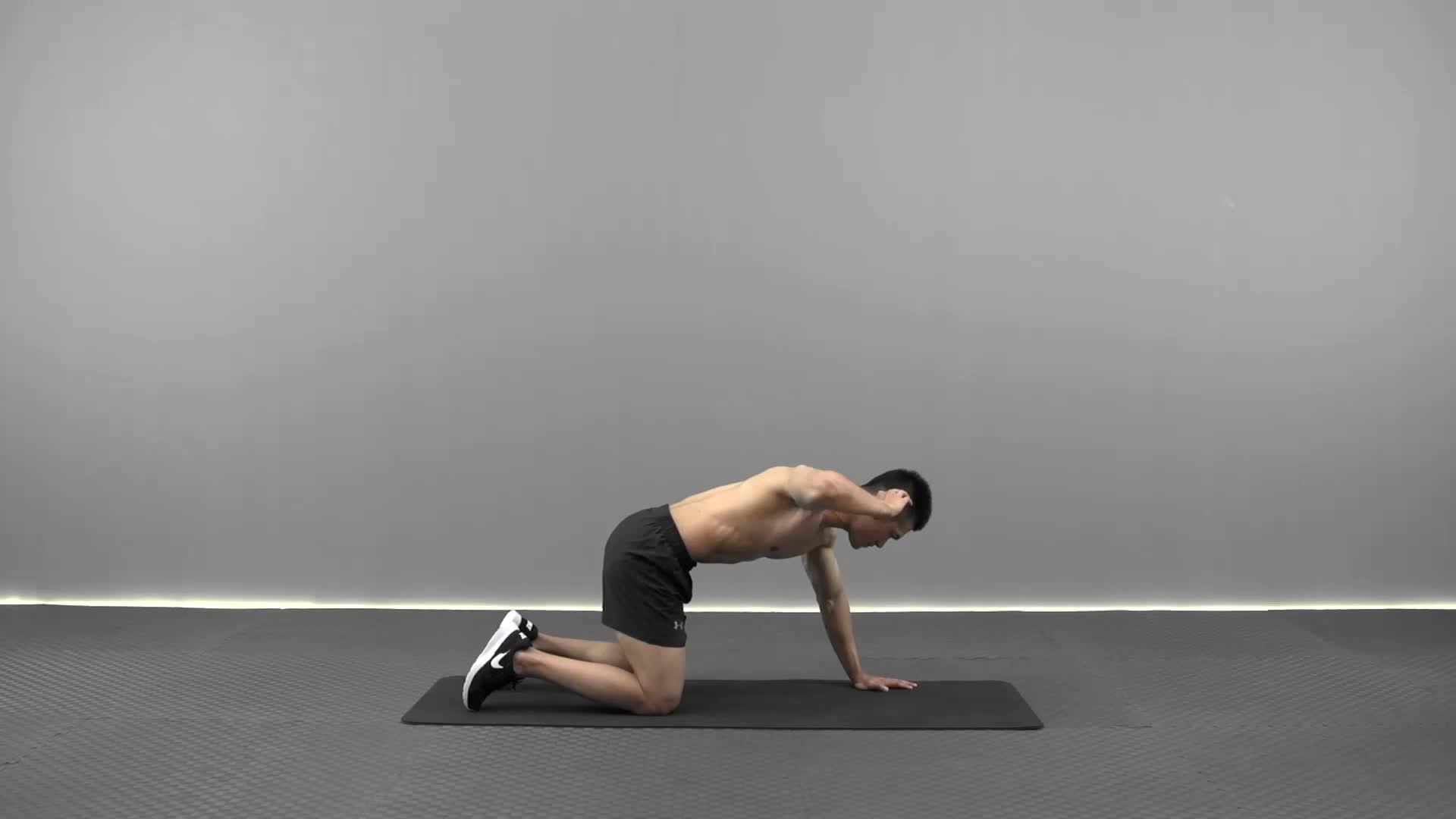 胸椎稳定运动 R