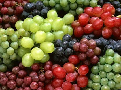 葡萄, 又叫草龙珠、山葫芦、蒲桃、菩提子、