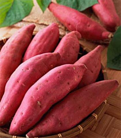红薯, 又叫山芋,甘薯(红心),地瓜