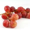 红提子葡萄, 又叫提子、红提