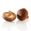 香菇, 又叫冬菇、香菌、爪菰、花菇、香蕈、香菰、香信