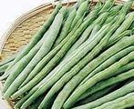 四季豆, 又叫菜豆、豆角、白饭豆、云扁豆、龙爪豆、龙骨豆、芸豆、白豆、二生豆