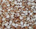 芡实米, 又叫鸡头米、水鸡头、鸡头苞、鸡嘴莲、刺莲蓬实