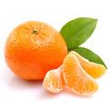 橘子, 又叫橘柑、柑橘、桔柑子