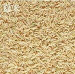 糙米(未蒸), 又叫活米,发芽米