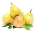 梨, 又叫梨子、快果、玉乳、果宗、蜜父、雪梨、香水梨、青梨
