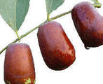 红枣(鲜), 又叫红枣、美枣、良枣