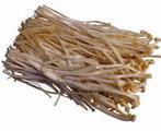 金针菇, 又叫朴菰 、构菌、冻菌、金菇、毛柄金钱菌、智力菇