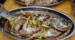 葱油鲜鲢鱼