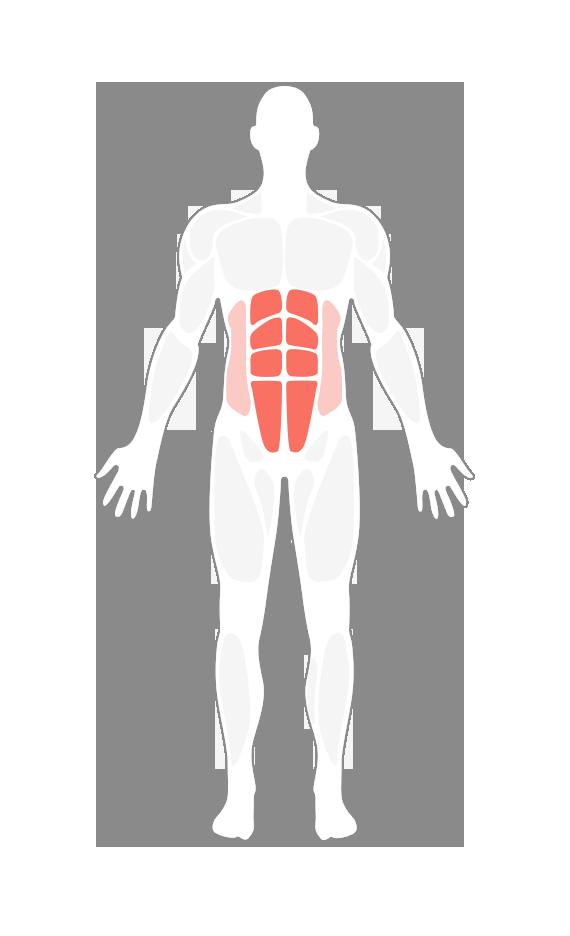 健身动作动态图解_十字交叉正确动作要领_十字交叉视频GIF图解_Hi运动健身网