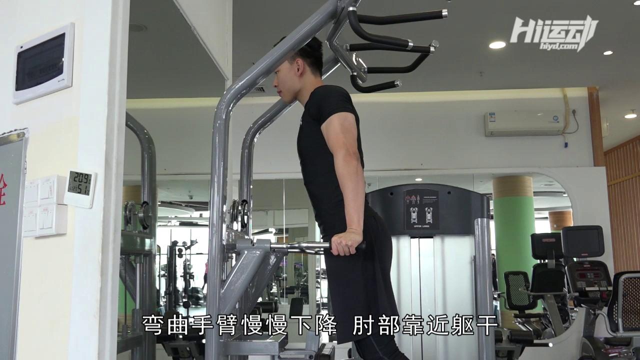 双杠臂屈伸 - 肱三头肌版本