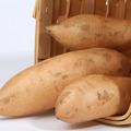 白薯, 又叫山芋、地瓜、番薯、白苕、甘薯(白心)