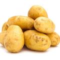 马铃薯, 又叫土豆、洋芋、地蛋、山药蛋、洋番薯